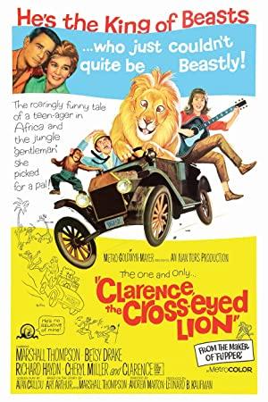 Clarence, der schielende Löwe